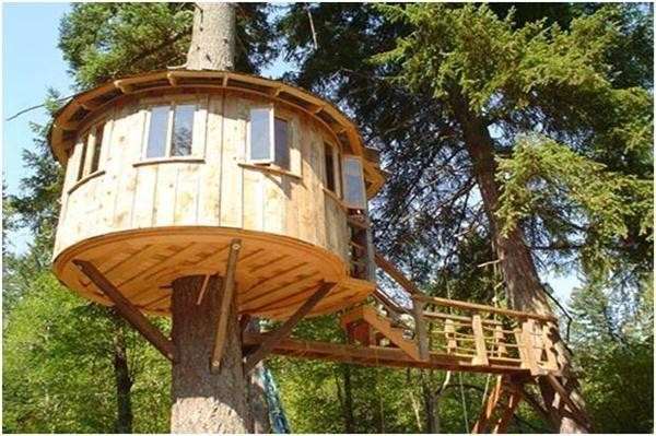 Cool Kids Tree House good tree house ideas