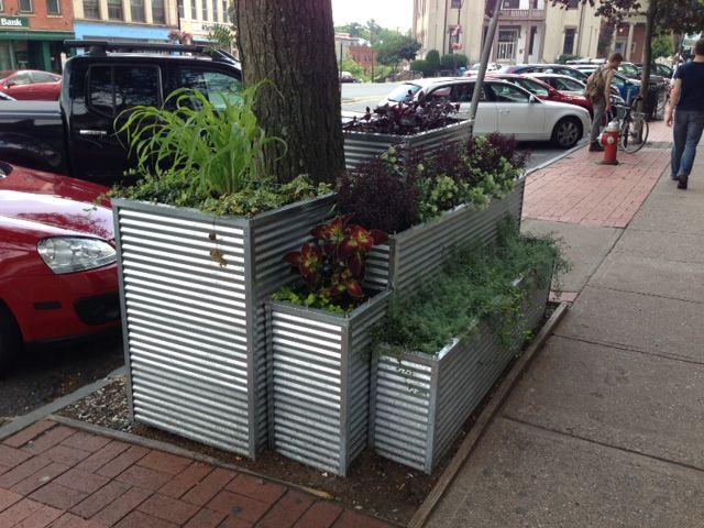 Raised Vegetable Garden Corrugated Iron