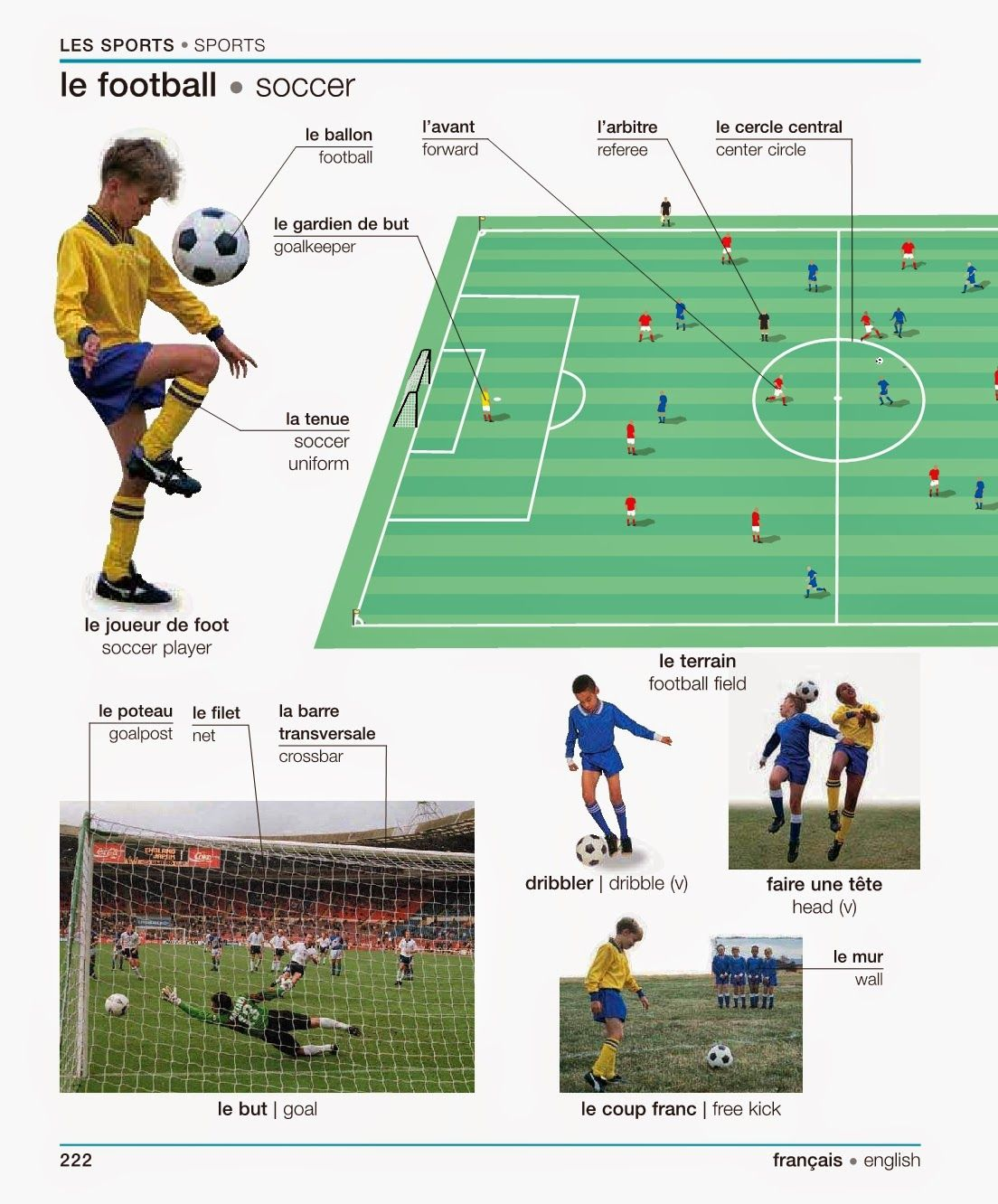There Are Some Simple Terms Of One Sport Of Soccer Each