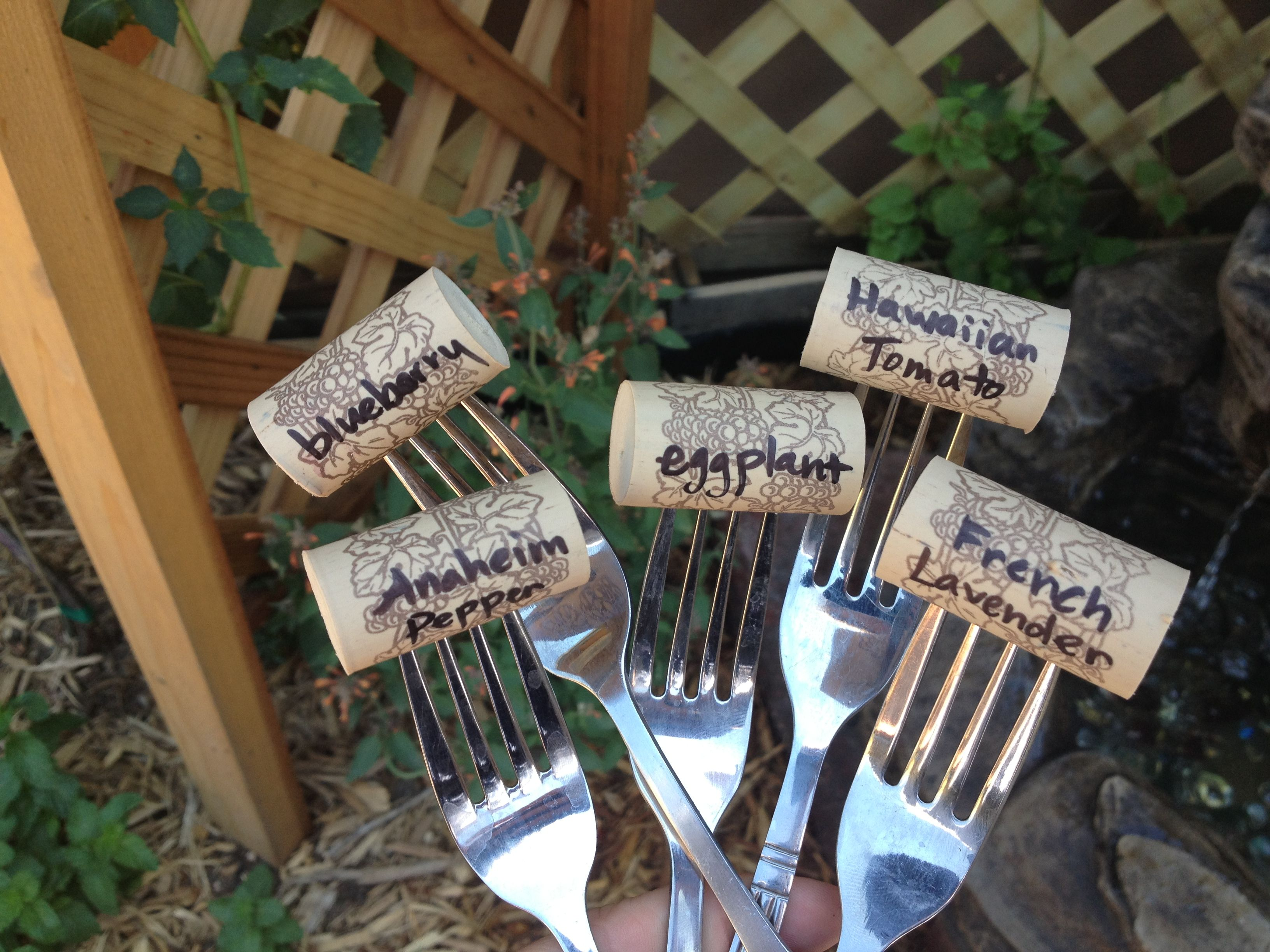 Cheap Easy Garden Labels Garden Ideas Pinterest Gardens