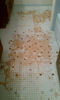Can U Paint Bathroom Tiles. how to paint over ugly old ...