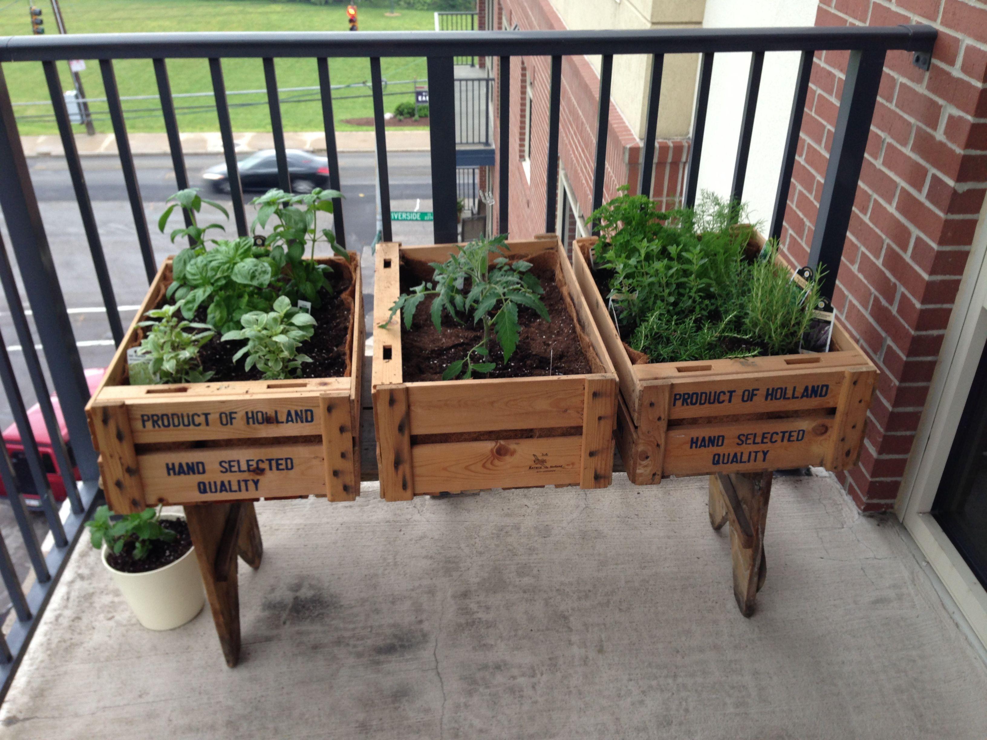 Balcony Herb Garden Garden Pinterest Gardening Herbs Garden