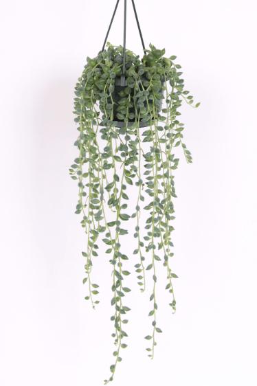 Design Hanging Planters