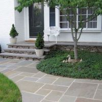 Bluestone Walkway Design Ideas, Pictures, Remodel, and ...