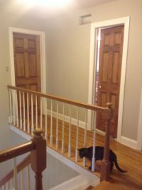 Wood doors...stained special walnut with white trim ...
