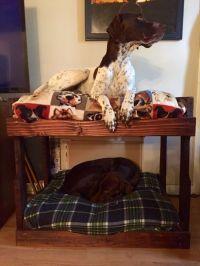 DIY Dog Bunk Beds | Bunk bed, Dog and Dog beds