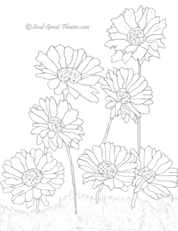 12 Beautiful Letter D Coloring Pages