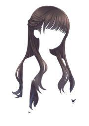 resultado de para pelucas
