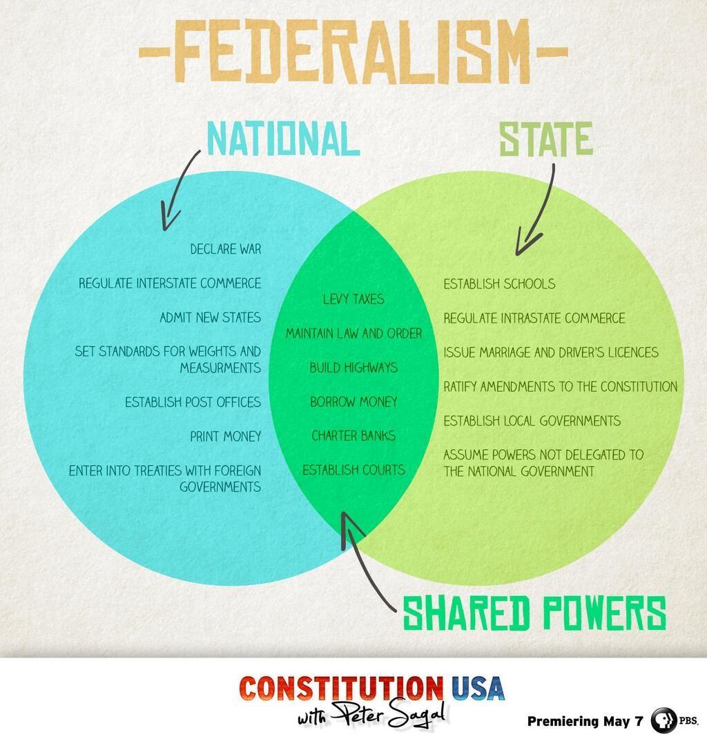 us government checks and balances diagram antecubital fossa