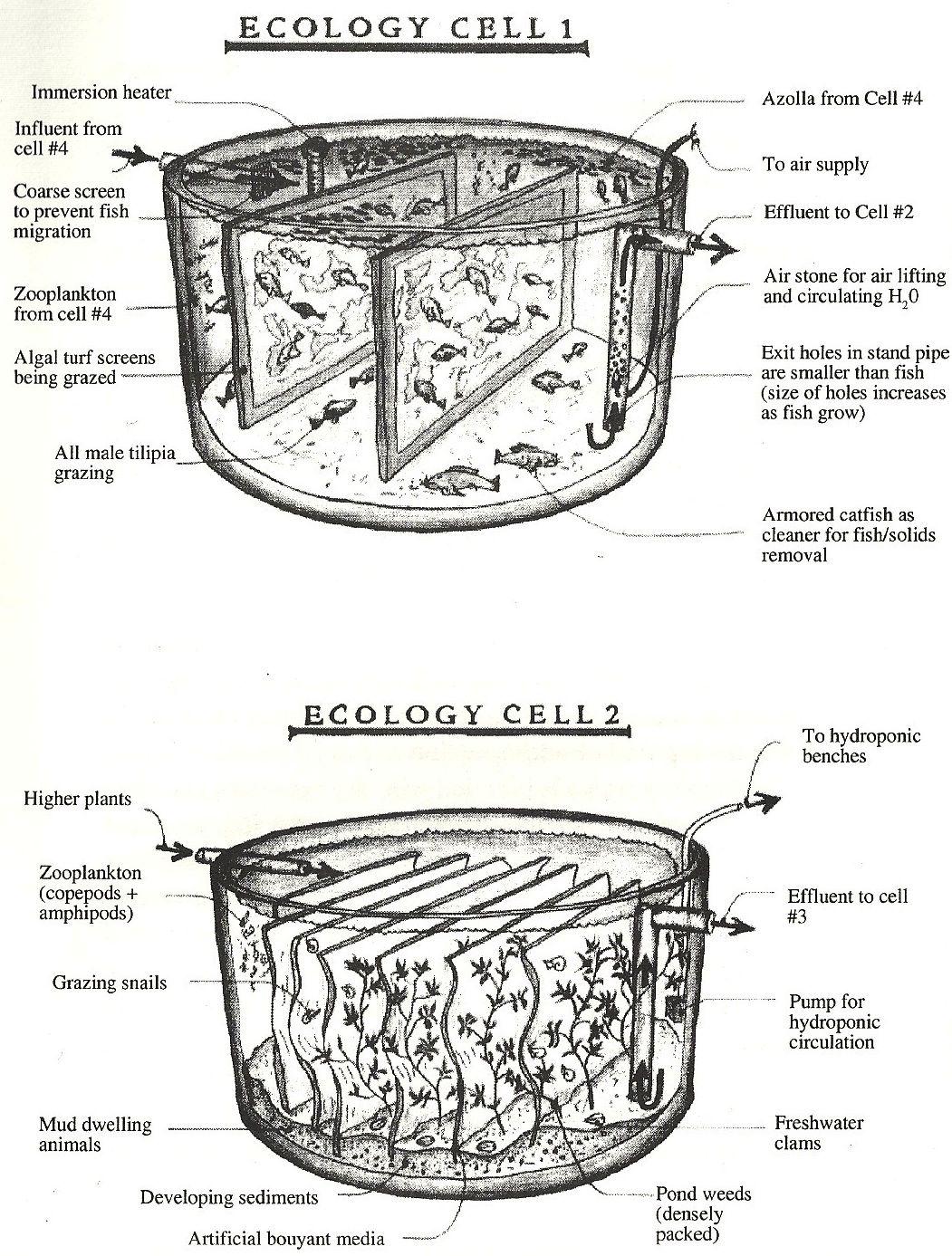 Pond Bio Filter