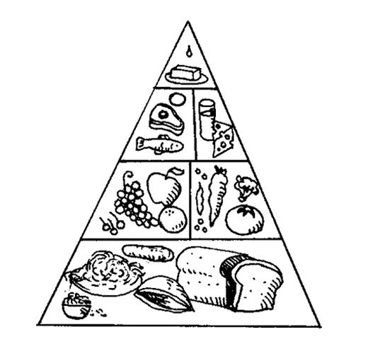 The Food Pyramid With A Nice Array Of Coloring Page For