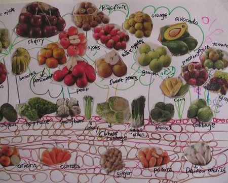 親子學習單DIY: 蔬果分類表 西瓜是長在樹上還是土裡? 酪梨是水果還是青菜? 孩子分辨不出蔬果的生長嗎 ...