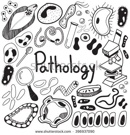 Pathology biology doodle handwriting icons of germ and