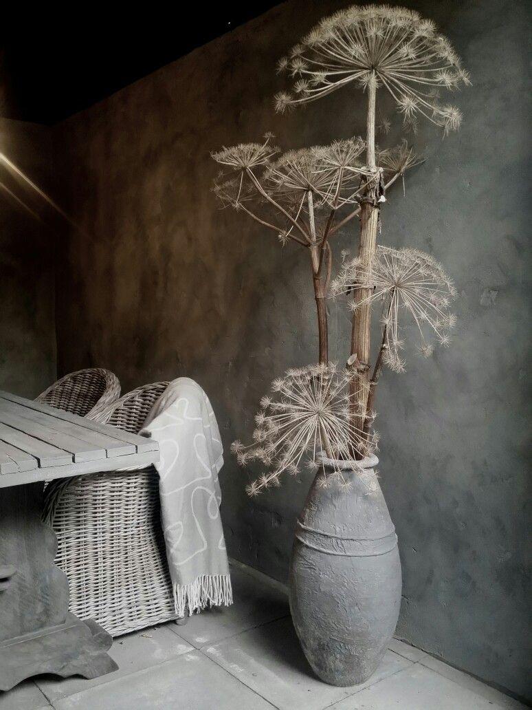 Decoratief Berenklauw in een oude vaas  Brocante diy