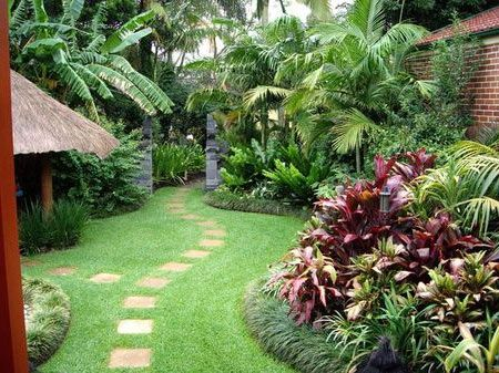 Tropical Backyards Well Maintained Tropical Backyard Garden In