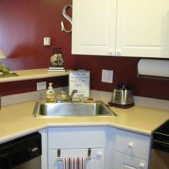 Corner Sinks Kitchen Pegasus Faucet Modern Small Sink Design Interior Images