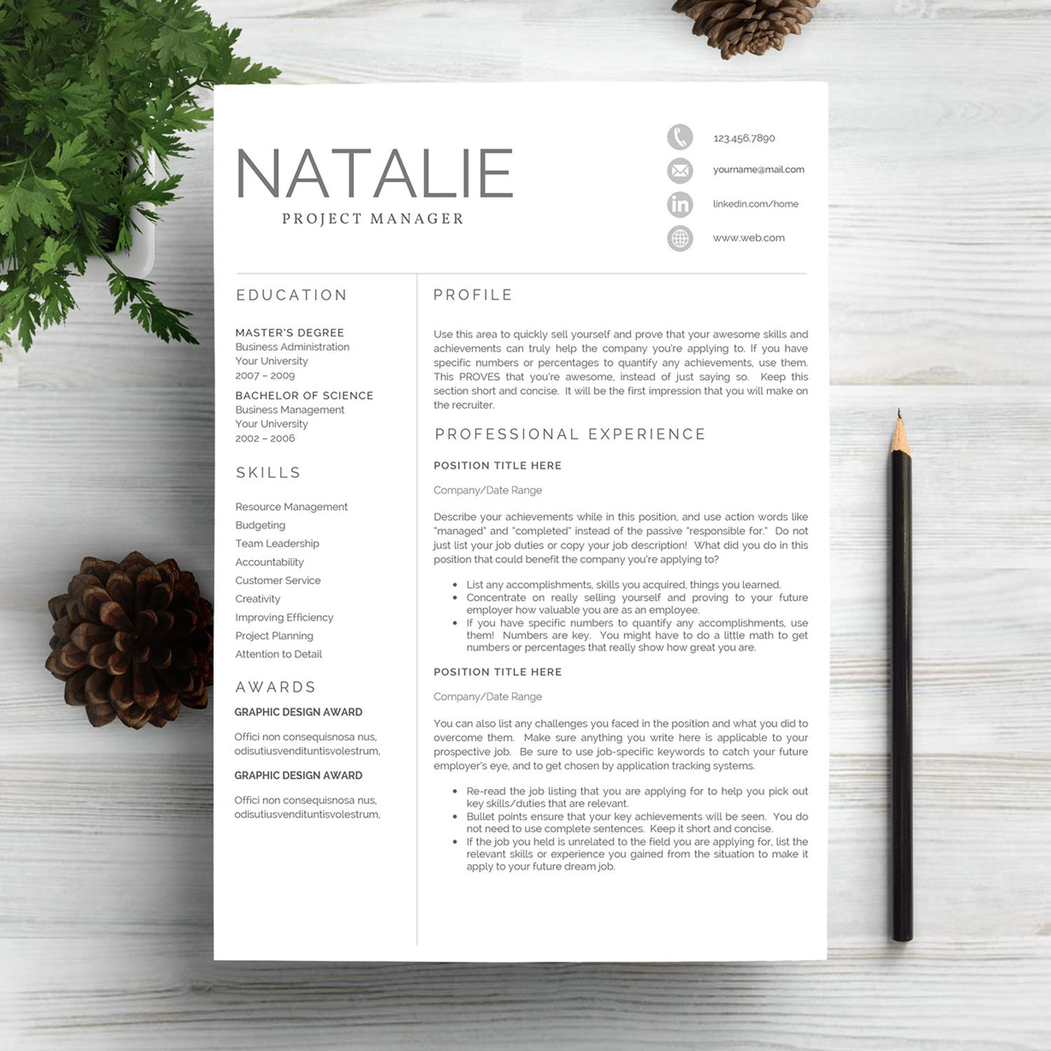 Resume Template Pinterest Professional Resume Template For Project Manager Resume