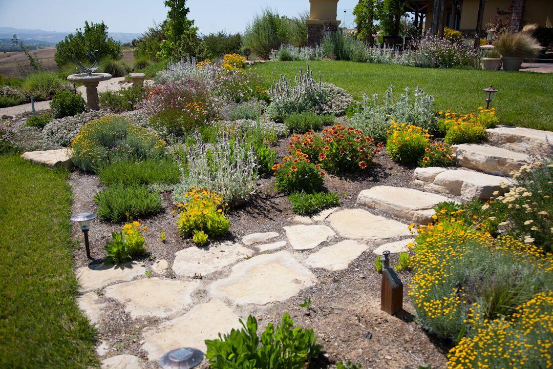 Xeric Landscape Design