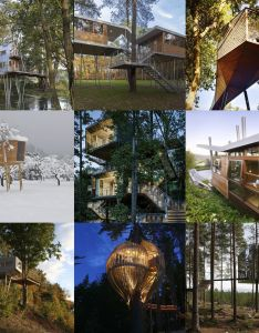 The word  ctreehouse   can conjure up fond childhood memories for many as  kid idea of house floating above ground is an endless source also stunning treehouses that will bring out your inner child rh pinterest