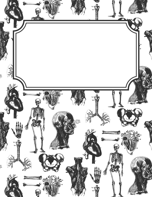 Free printable anatomy binder cover template. Download the