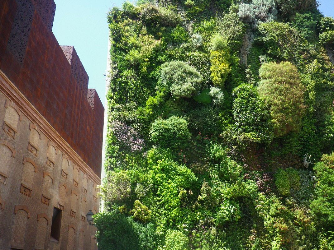 vertikaler garten anlegen - boisholz, Gartengestaltung