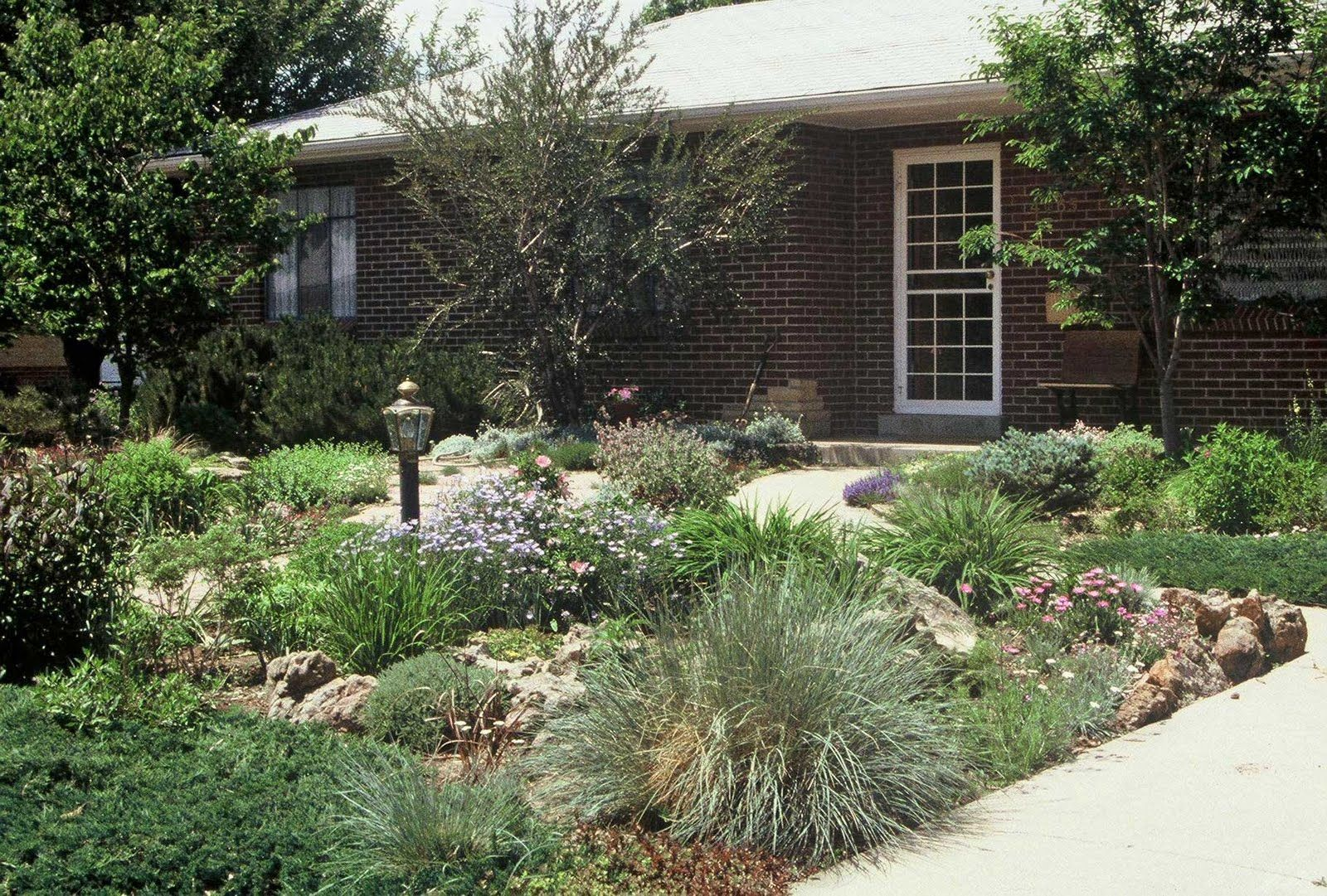 Front Yard Without Grass Home Design And Decor Reviews Yard