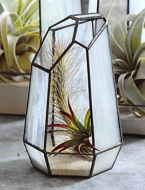 20 Stained Glass Terrarium Patterns Pictures And Ideas On Meta Networks