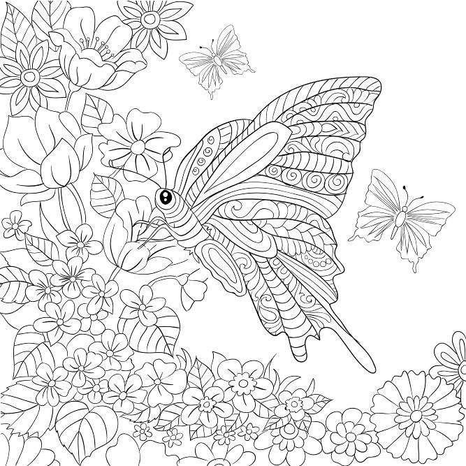 Butterfly Garden: Beautiful Butterflies and Flowers