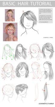 basic hair tutorial - styles