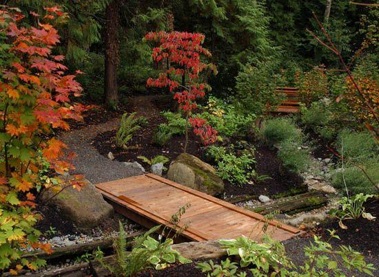 Shade Garden In The Pacific Northwest Yard Pinterest Gardens