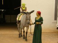 Shrek Horse Costume   For Art's Sake   Pinterest   Horse ...