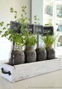 Herbs in old drawer inside fruit jars for kitchen window