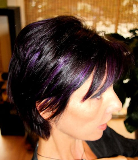 Black hair with purple highlights the best hair 2017 40 versatile ideas of purple highlights for blonde brown and red hair pmusecretfo Image collections