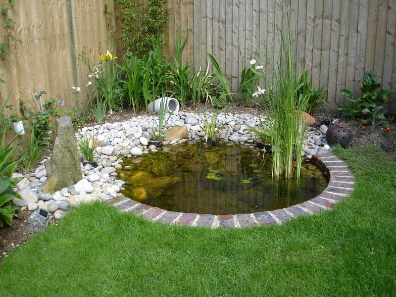25 Best Ideas About Pond Design On Pinterest Koi Pond Design