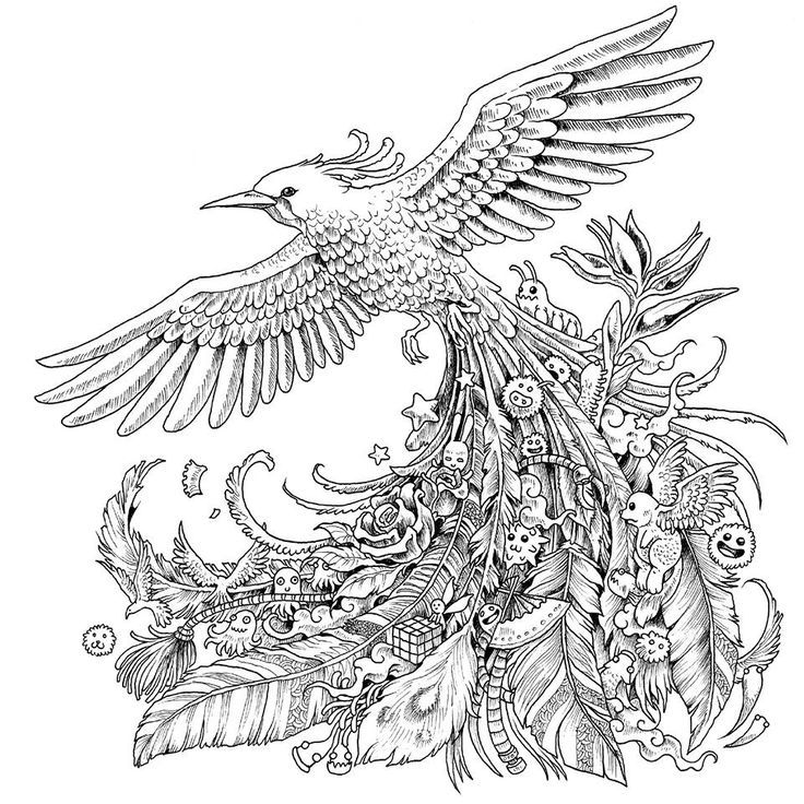 Check out this very interesting bird adult coloring