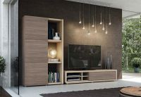 Modern Natural Wall Storage System with TV Unit and Tall ...