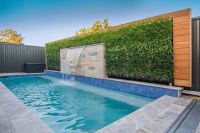 Vertical grass pool plantwall Wilson, Perth by 02 Plant ...