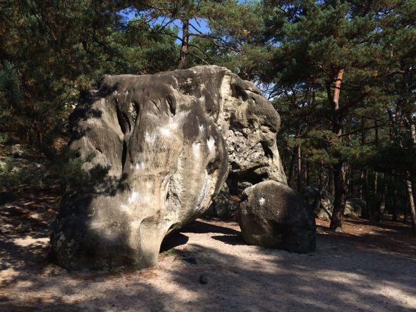 Fontainebleau France Bouldering