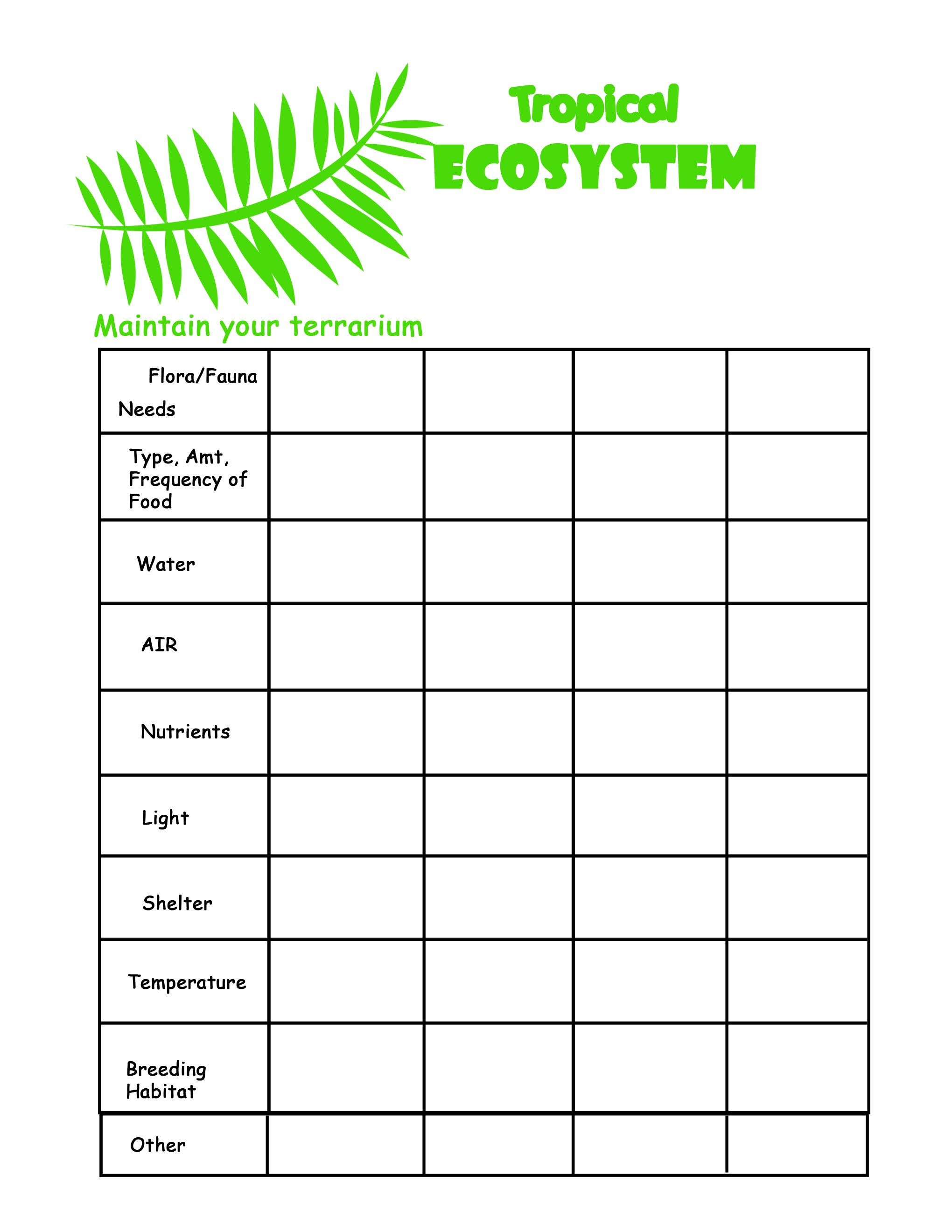 28 What Is An Ecosystem Worksheet