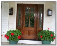 Wooden Front Doors With Glass Panels