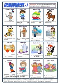 HOMOPHONES worksheet | ELL/ESL | Pinterest | Worksheets ...