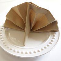 Thanksgiving turkey napkin fold is perfect in any napkin