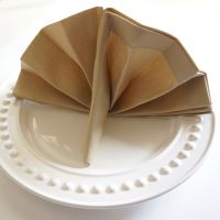 Thanksgiving turkey napkin fold is perfect in any napkin ...