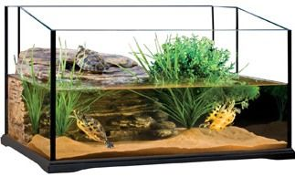 tank image 3 Red Eared Slider Habitat Turtle Aquariums