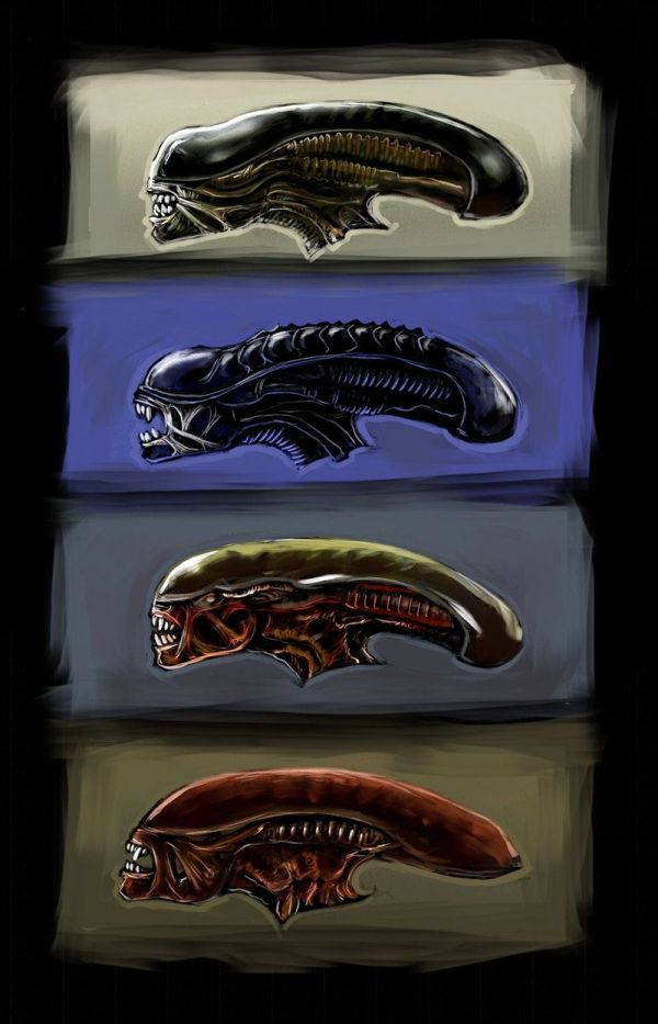 20+ Different Alien Species Xenomorphs Pictures and Ideas on Meta