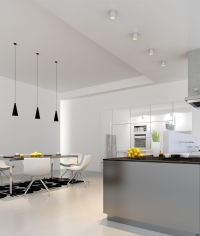 Surface mount light L600 and pendant light P97L in kitchen ...