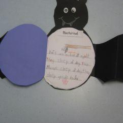 Stellaluna Venn Diagram Activity 2003 Mitsubishi Eclipse Engine Bat Jamboree Activities Our Book And Then Displayed