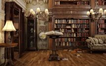 Old Victorian Library Interior