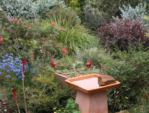 1000 Images About Garden Ideas On Pinterest Gardens Garden