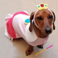PRINCESS PEACH NINTENDO costume for Dogs | Dog halloween ...